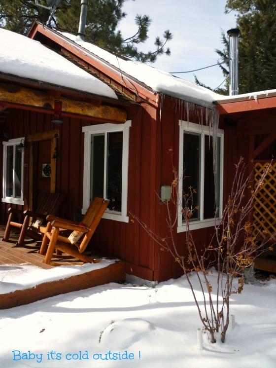 008  cabin cold