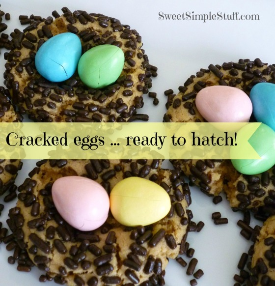 Cracked eggs ready to hatch