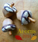 Acorns 2014 cookies and caramel